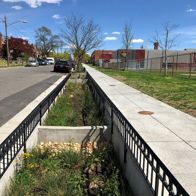 Completed planter for bioretention for Green Infrastructure Installations in Washington, DC.